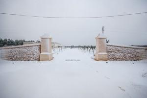 1 - Ingresso con neve