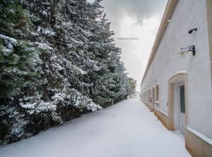 4 - La tenuta e la neve