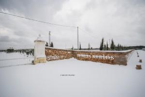 La neve sulla Tenuta Kyrios 2 _DSC0755 M © MAURO PALANO