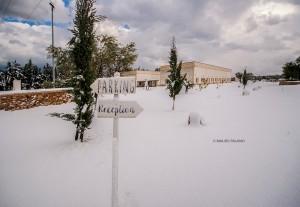 La neve sulla Tenuta Kyrios 6 _DSC0778 M © MAURO PALANO