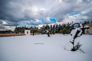 La neve sulla Tenuta Kyrios 7 _DSC0790 M © MAURO PALANO